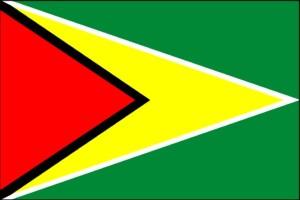 Hiring Partners in Guyana